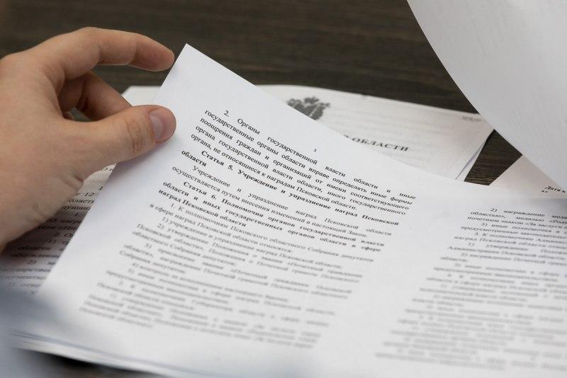 Общественное обсуждение закона «О наградах Псковской области» пройдет с 30 мая по 8 июня, фото-3
