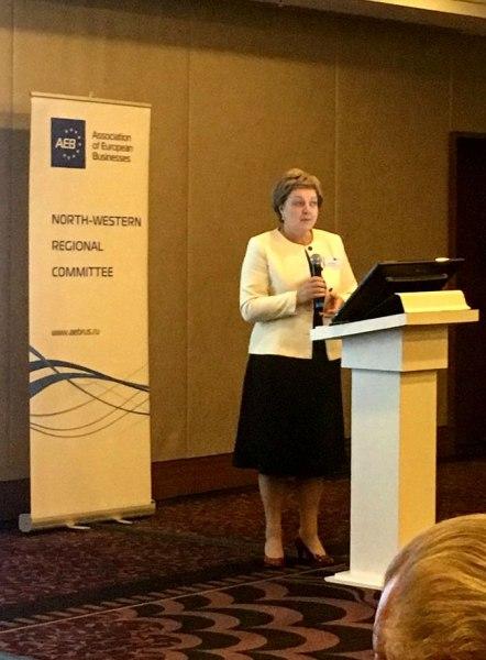 Инвестиционный потенциал Псковской области представлен в Ассоциации европейского бизнеса, фото-2
