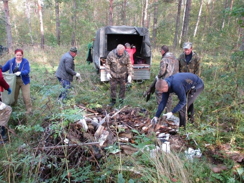Более 100 тыс сеянцев ели посадили в Псковской области в рамках акции «Живи, лес!», фото-2